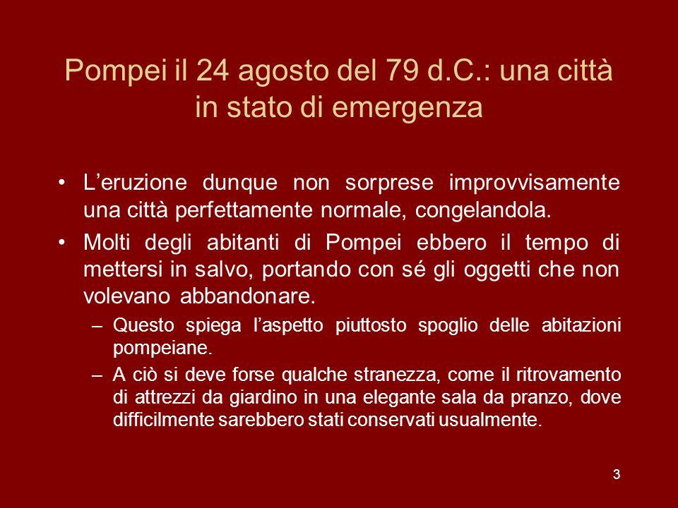 Pompei il 24 agosto del 79 d.C.: una città in stato di emergenza