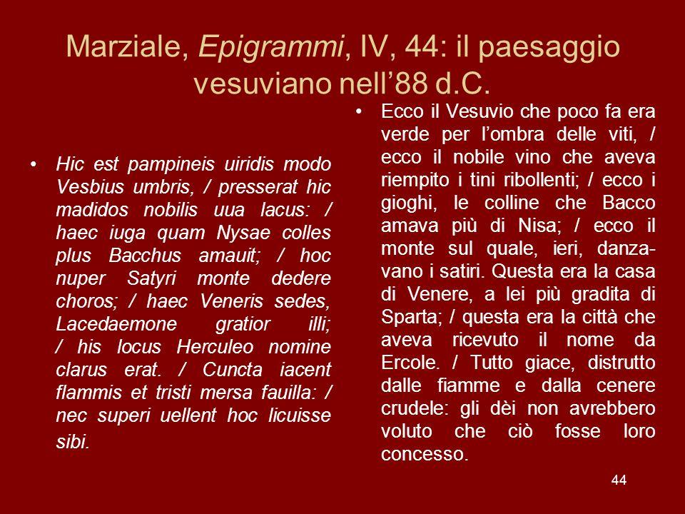Marziale, Epigrammi, IV, 44: il paesaggio vesuviano nell'88 d.C.