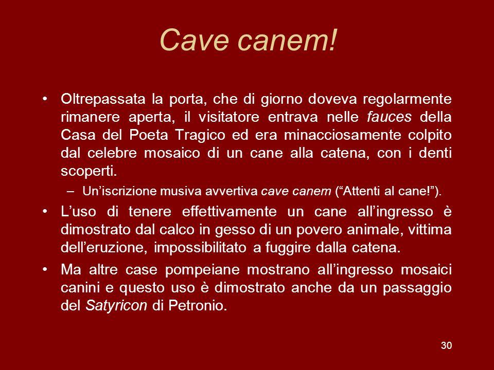 Cave canem!