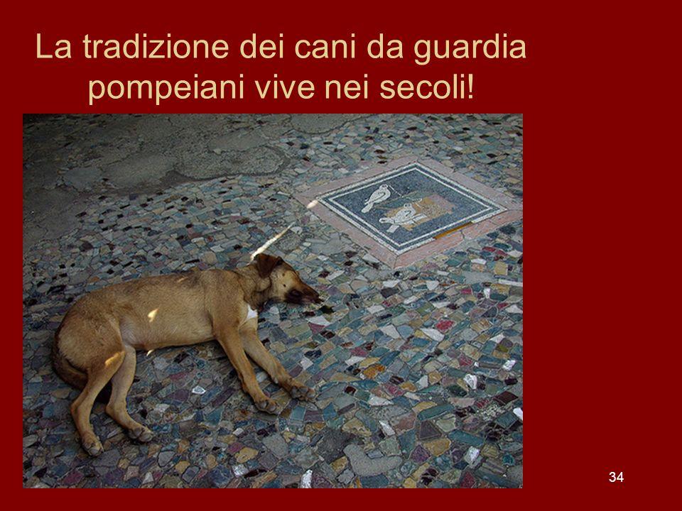 La tradizione dei cani da guardia pompeiani vive nei secoli!
