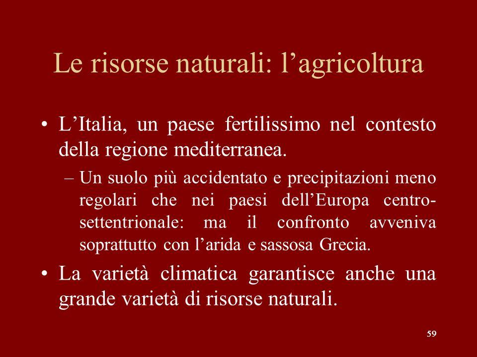 Le risorse naturali: l'agricoltura