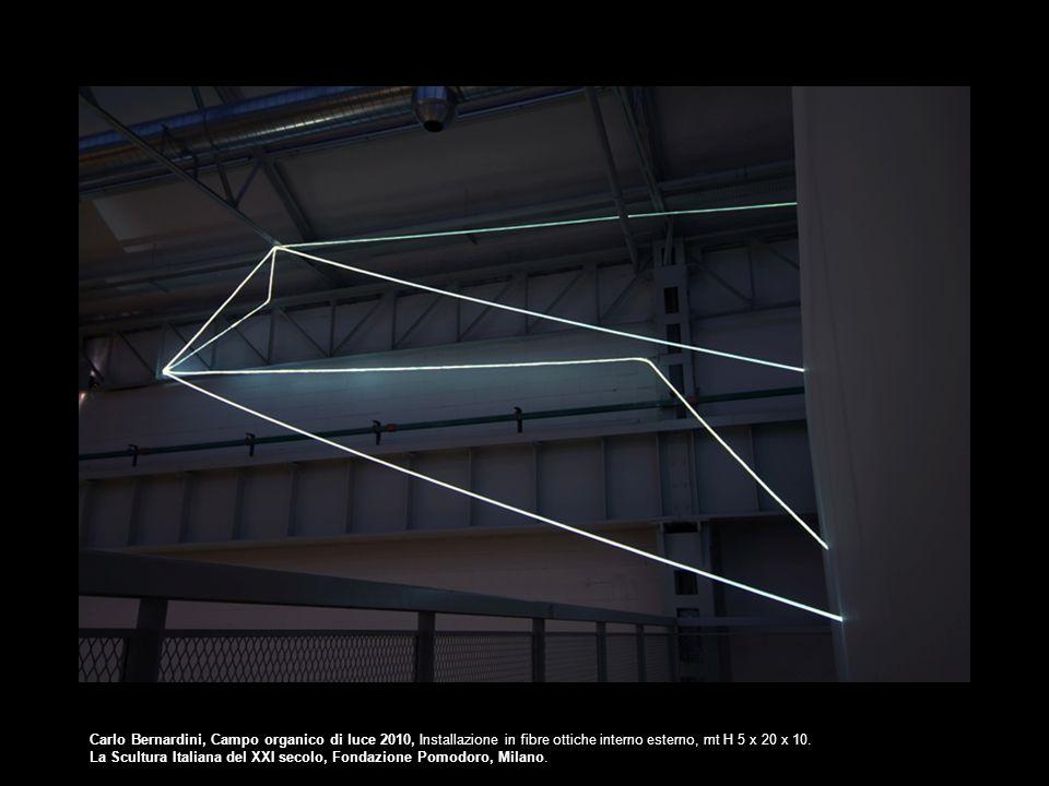 Carlo Bernardini, Campo organico di luce 2010, Installazione in fibre ottiche interno esterno, mt H 5 x 20 x 10.