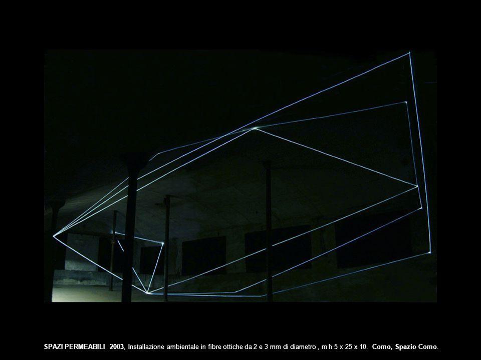 SPAZI PERMEABILI 2003, Installazione ambientale in fibre ottiche da 2 e 3 mm di diametro , m h 5 x 25 x 10.