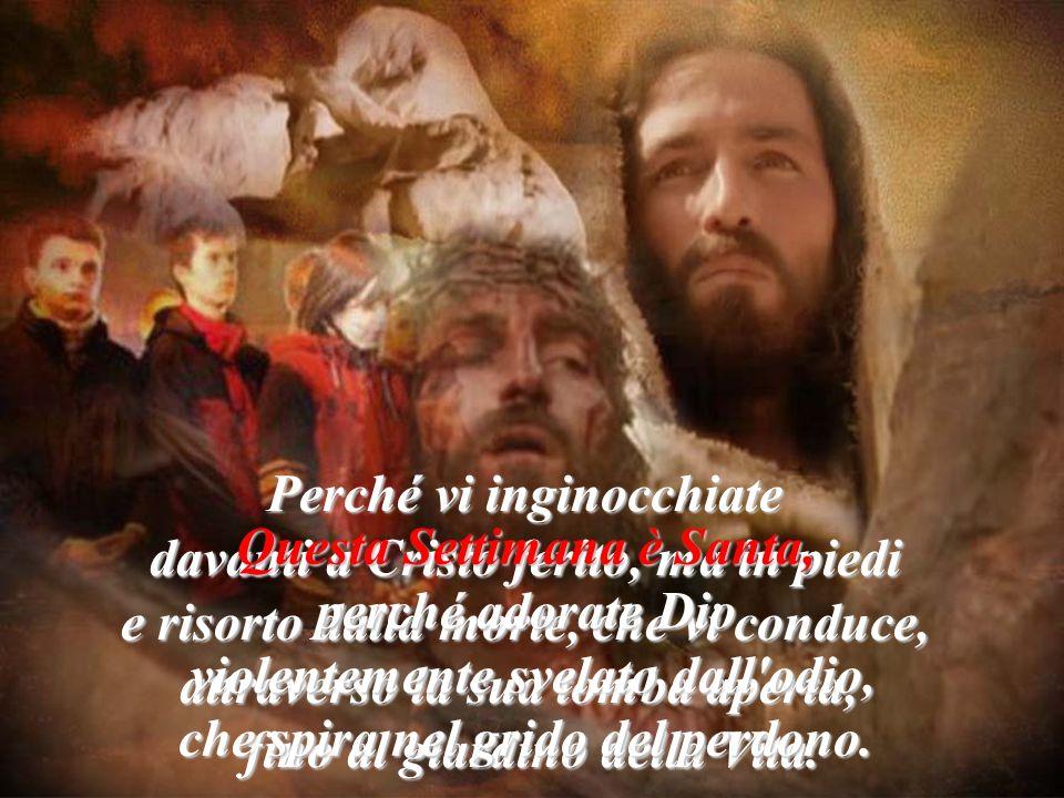 Perché vi inginocchiate davanti a Cristo ferito, ma in piedi