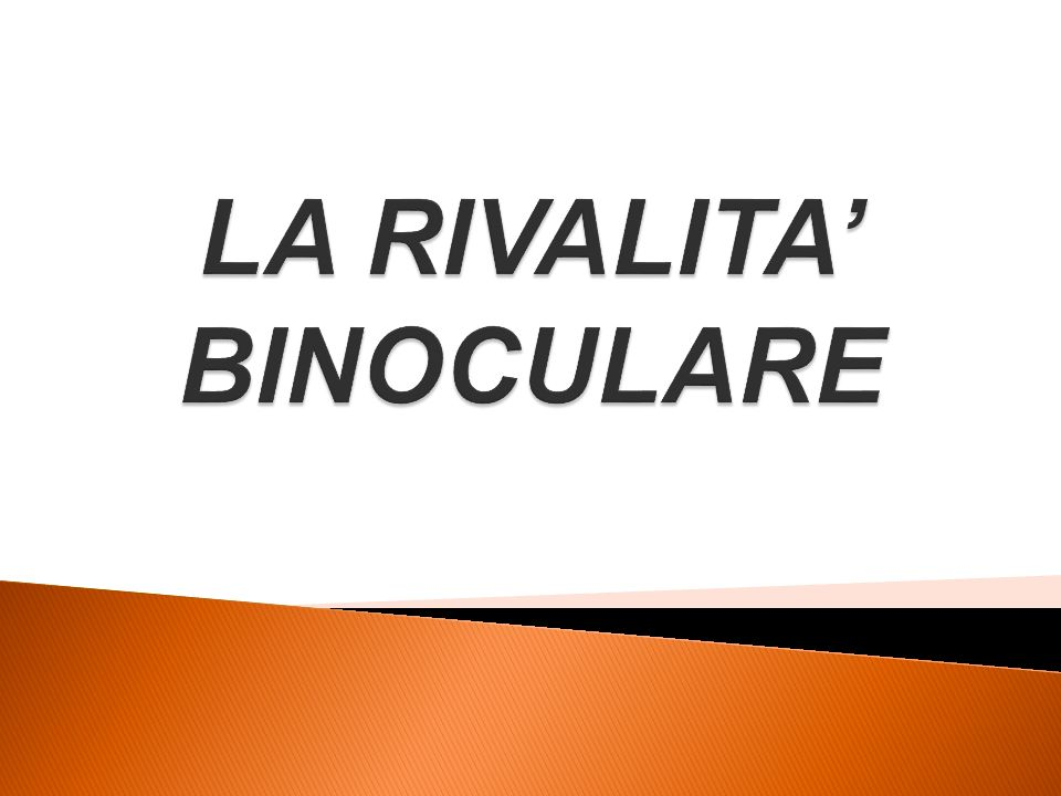 LA RIVALITA' BINOCULARE