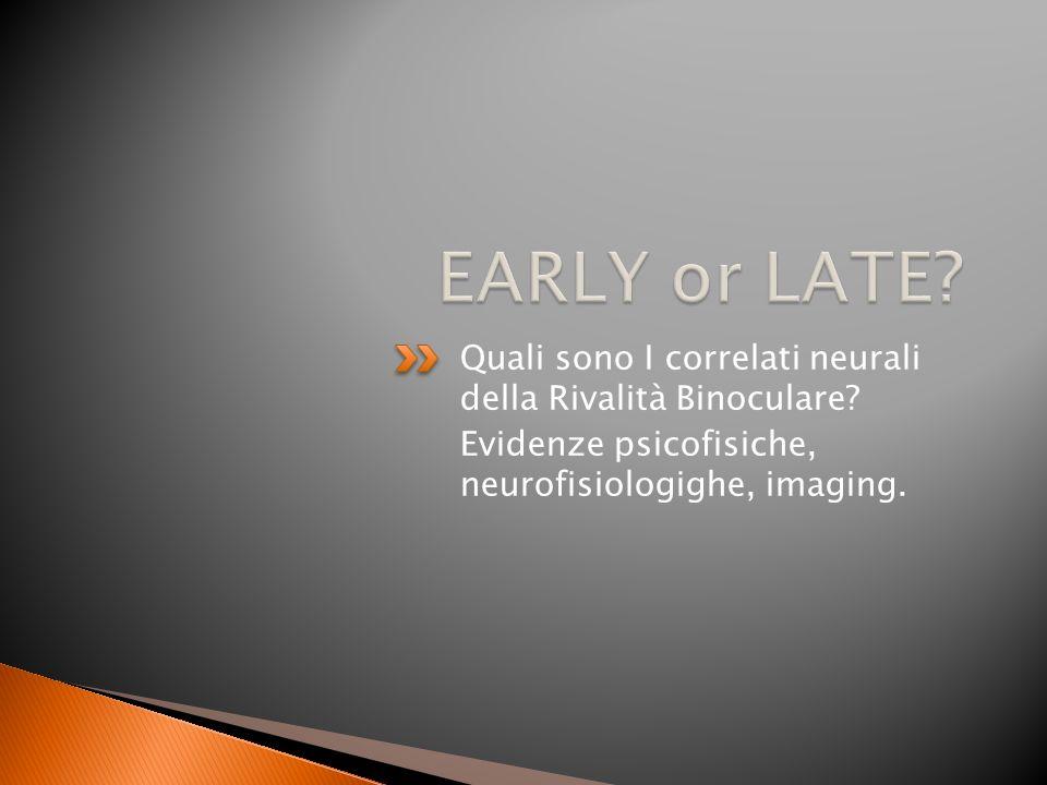 EARLY or LATE. Quali sono I correlati neurali della Rivalità Binoculare.
