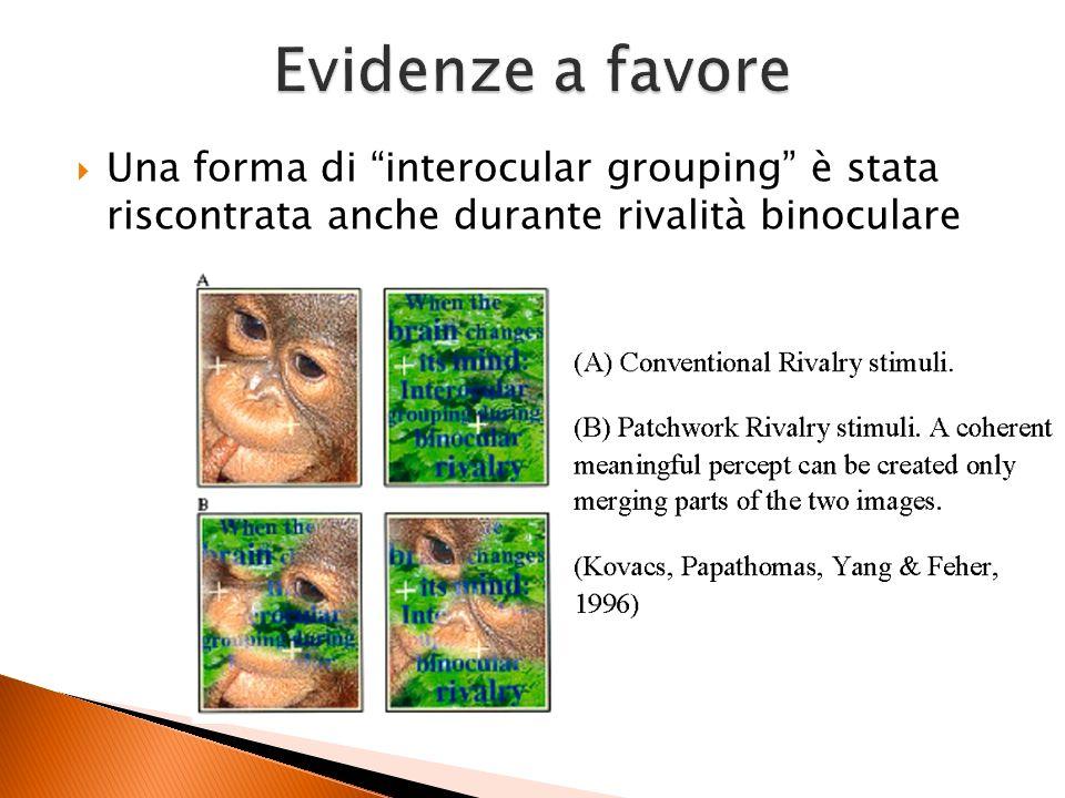 Evidenze a favoreUna forma di interocular grouping è stata riscontrata anche durante rivalità binoculare.