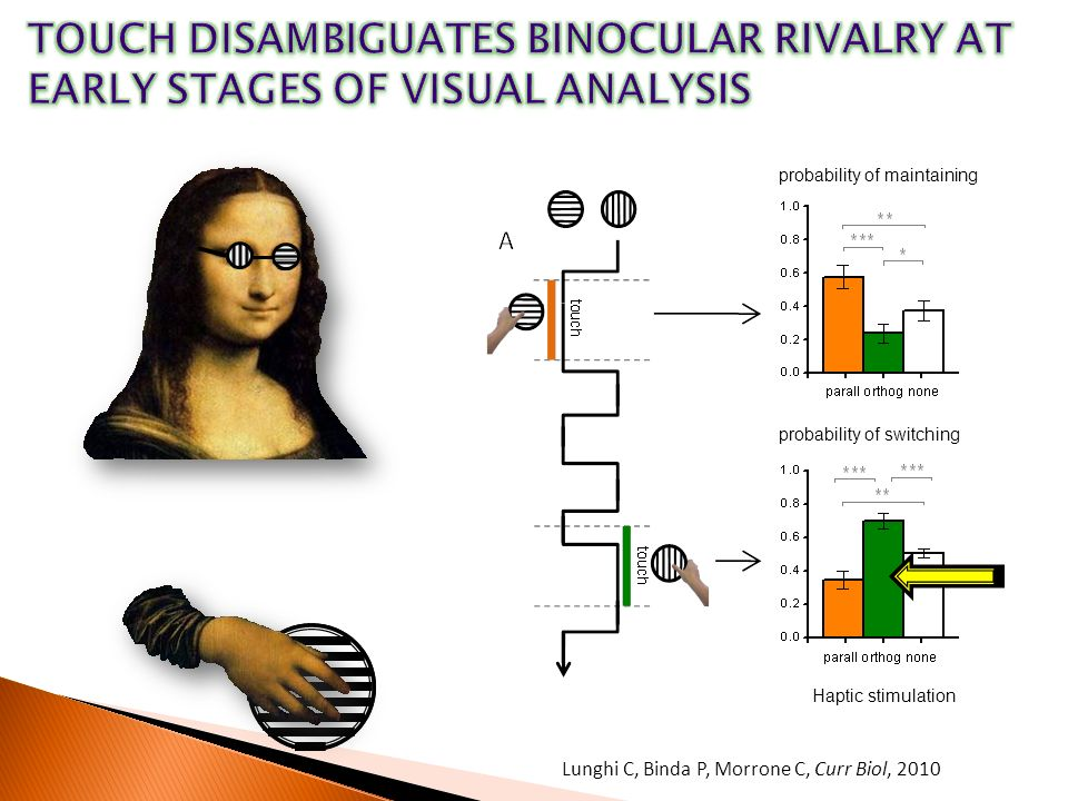 TOUCH DISAMBIGUATES BINOCULAR RIVALRY AT EARLY STAGES OF VISUAL ANALYSIS