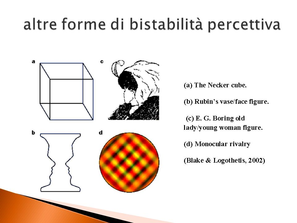 altre forme di bistabilità percettiva