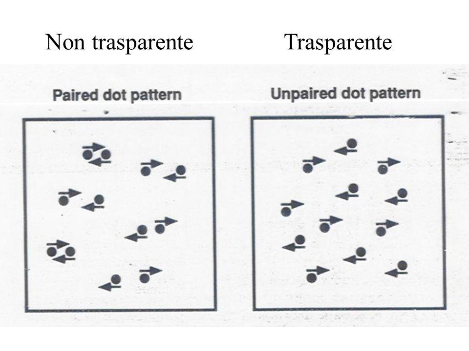 Non trasparente Trasparente