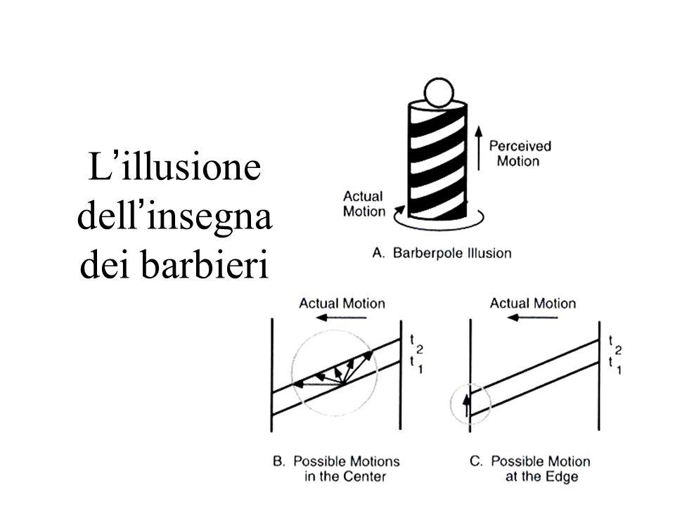 L'illusione dell'insegna dei barbieri