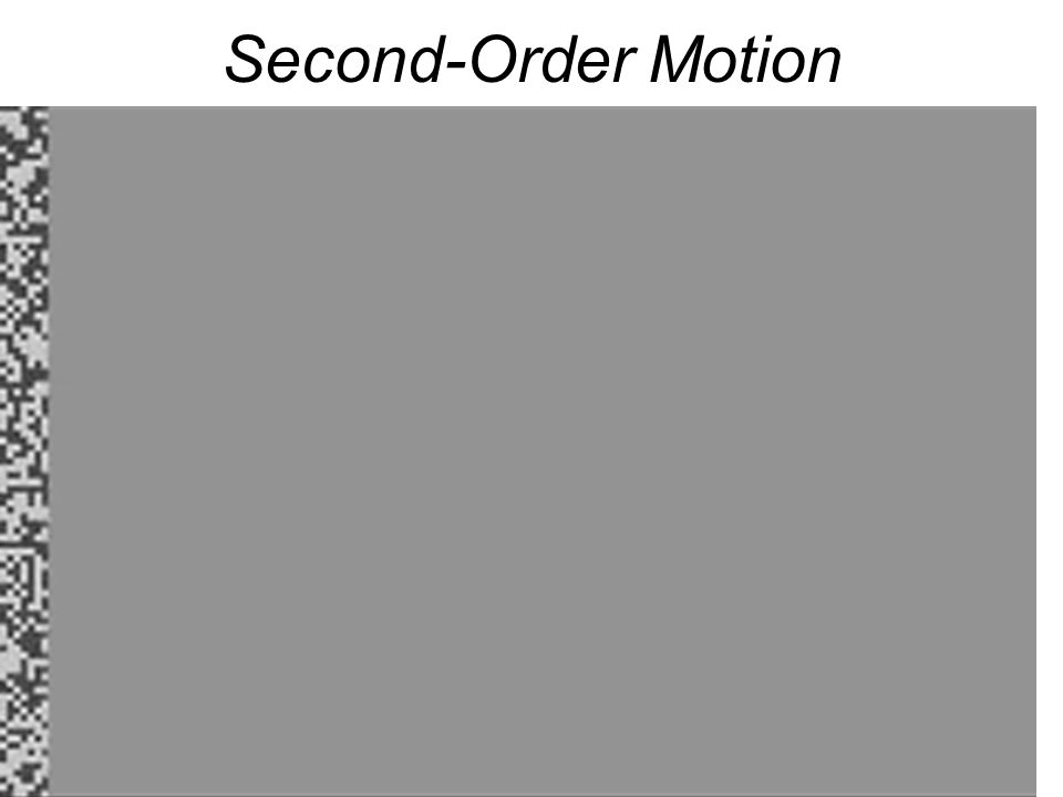Second-Order Motion Show phenomenon of second-order motion (Figures 7.9, 7.10).