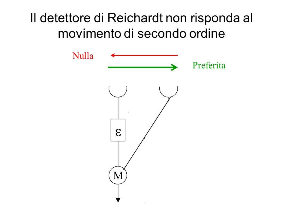 Il detettore di Reichardt non risponda al movimento di secondo ordine