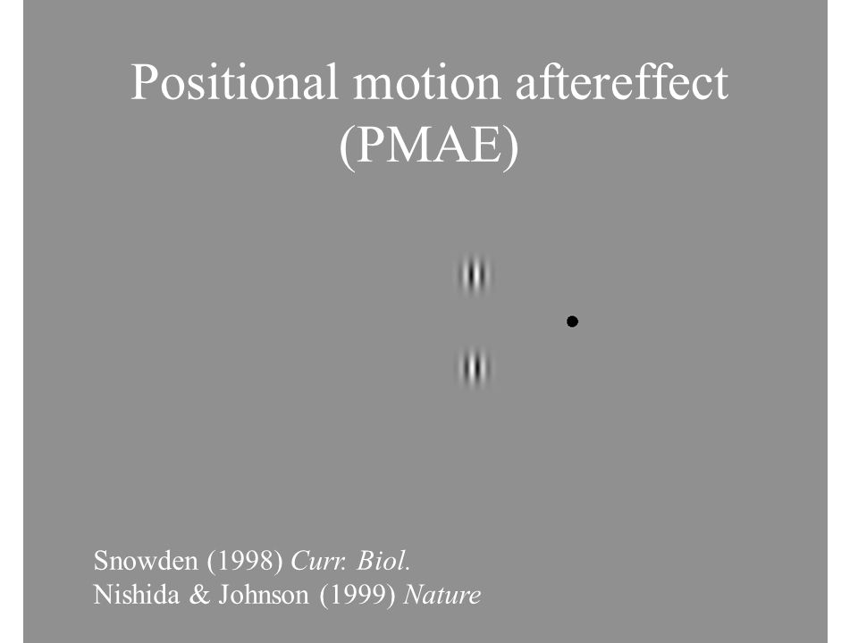 Positional motion aftereffect (PMAE)