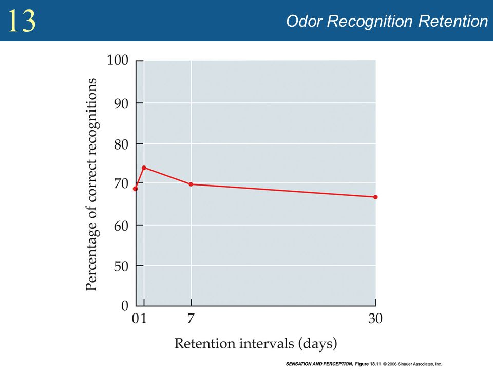 Odor Recognition Retention