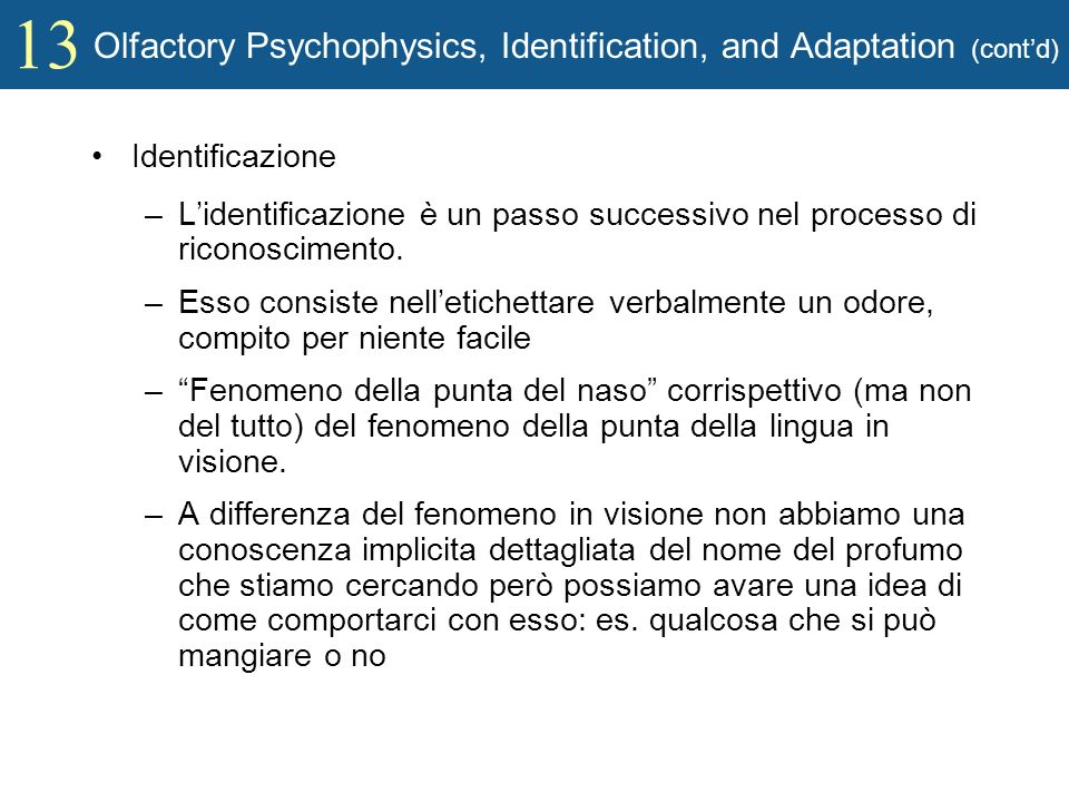 Olfactory Psychophysics, Identification, and Adaptation (cont'd)