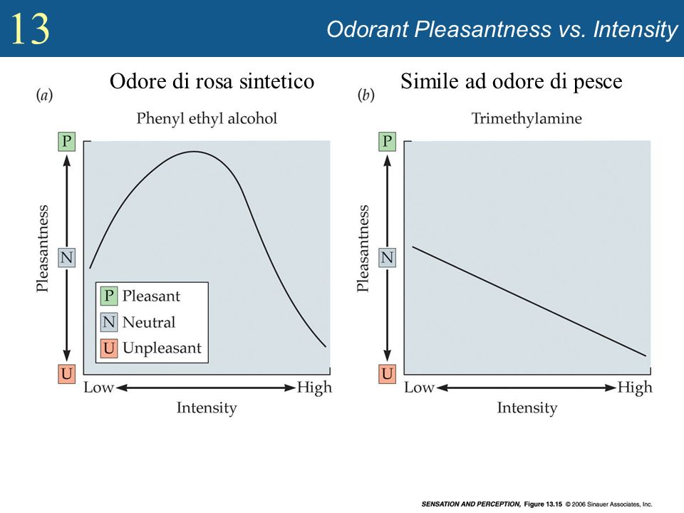 Odorant Pleasantness vs. Intensity