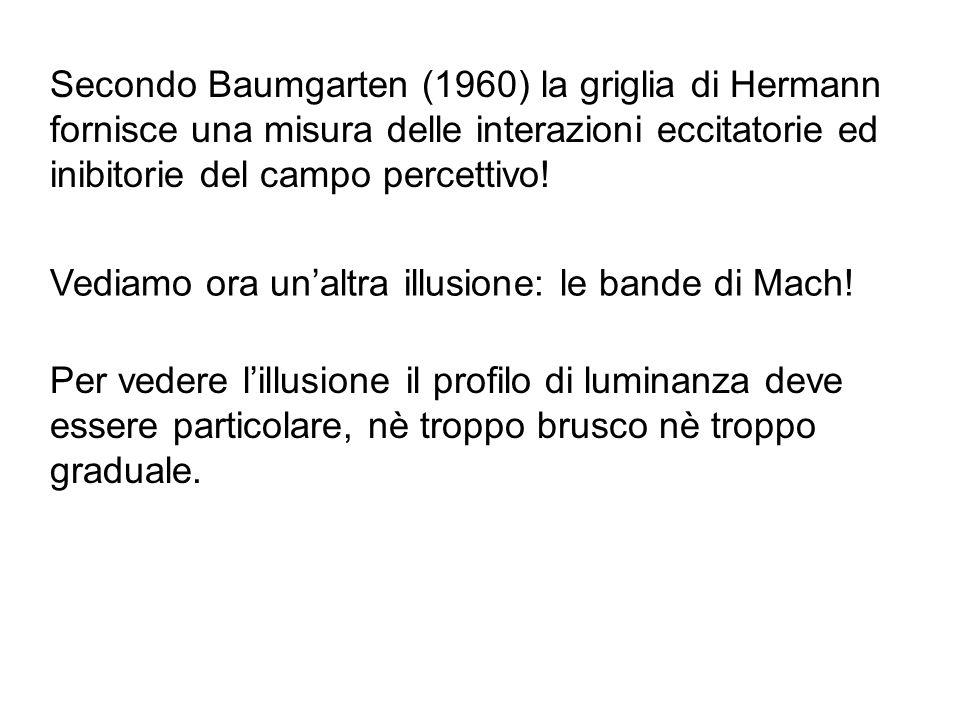 Secondo Baumgarten (1960) la griglia di Hermann fornisce una misura delle interazioni eccitatorie ed inibitorie del campo percettivo!