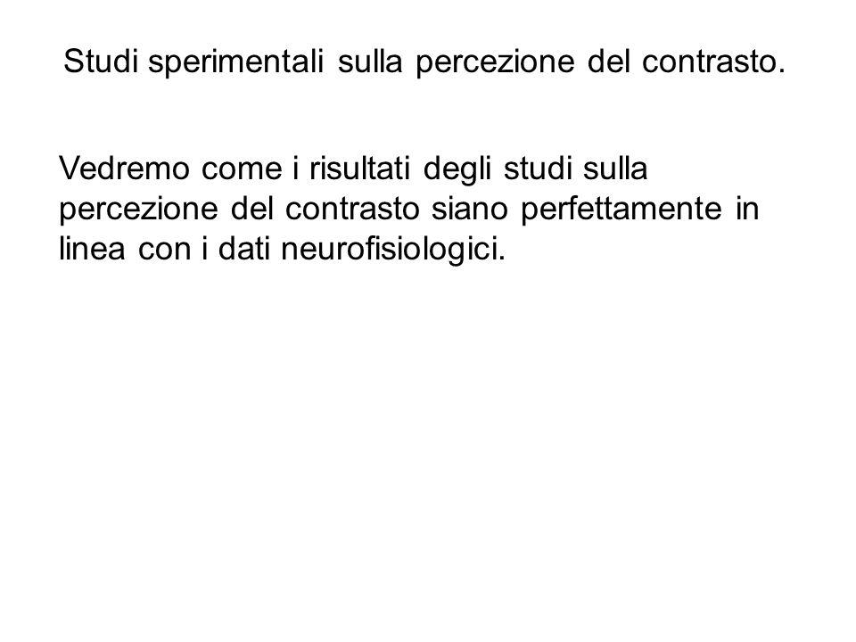 Studi sperimentali sulla percezione del contrasto.