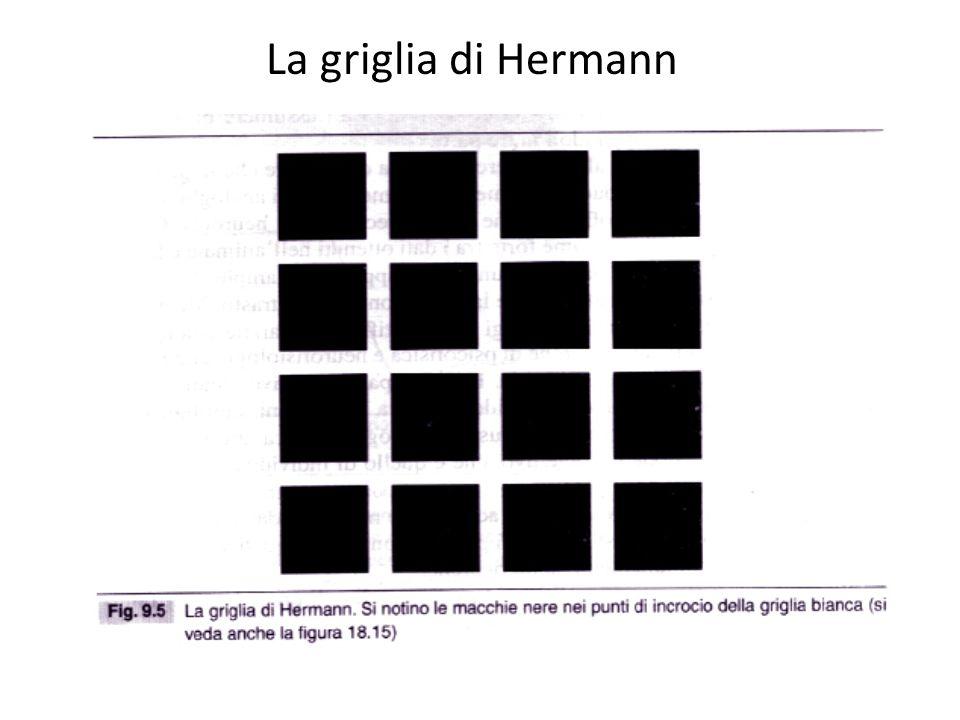 La griglia di Hermann