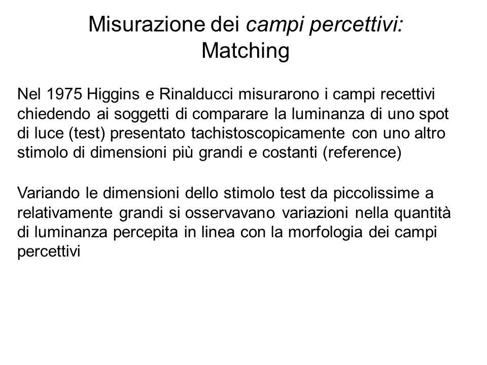Misurazione dei campi percettivi: