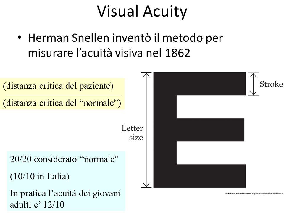 Visual Acuity Herman Snellen inventò il metodo per misurare l'acuità visiva nel 1862. (distanza critica del paziente)