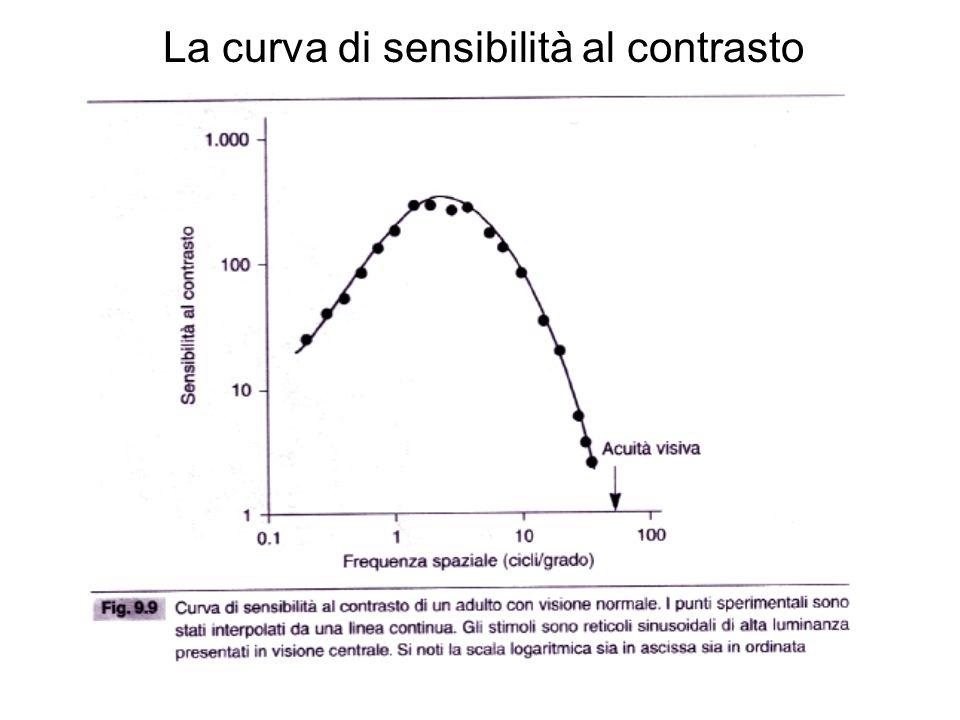 La curva di sensibilità al contrasto