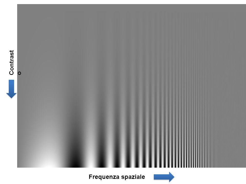 Contrasto Frequenza spaziale