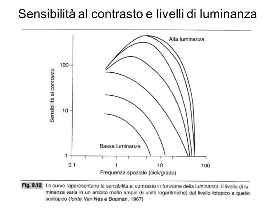 Sensibilità al contrasto e livelli di luminanza