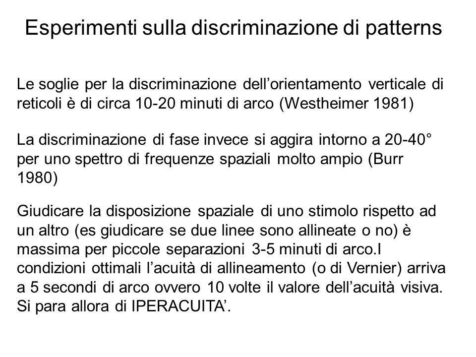 Esperimenti sulla discriminazione di patterns