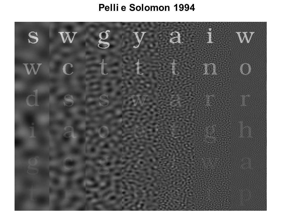 Pelli e Solomon 1994