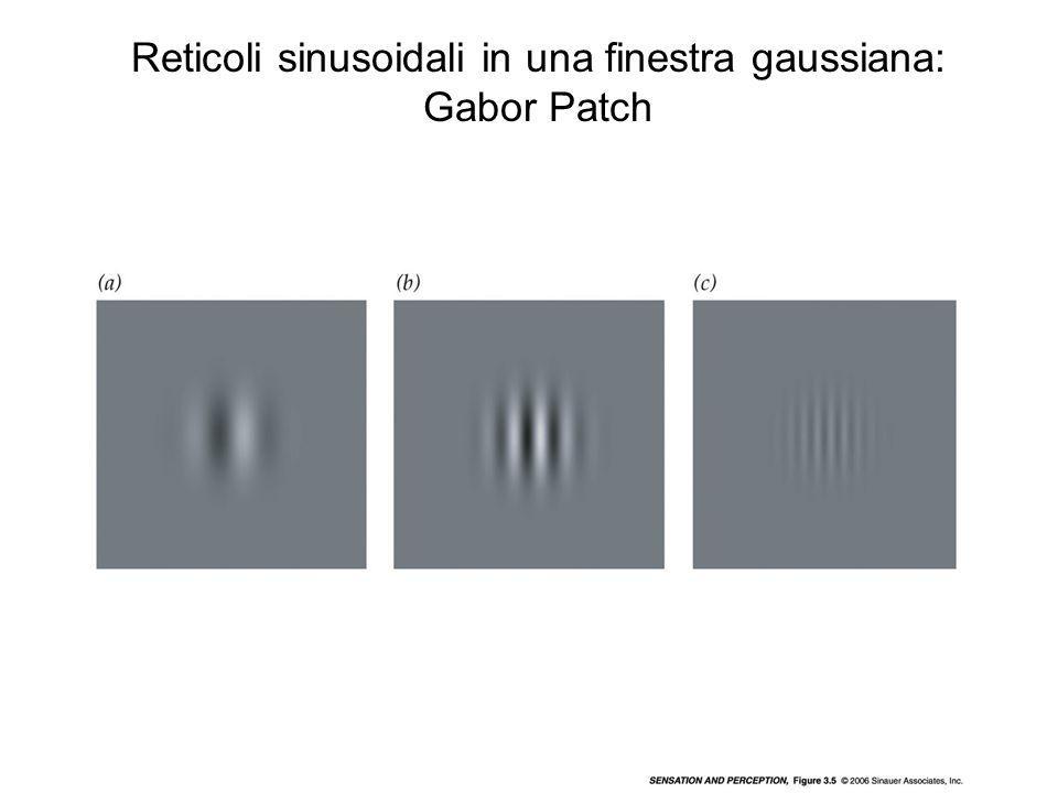 Reticoli sinusoidali in una finestra gaussiana: Gabor Patch