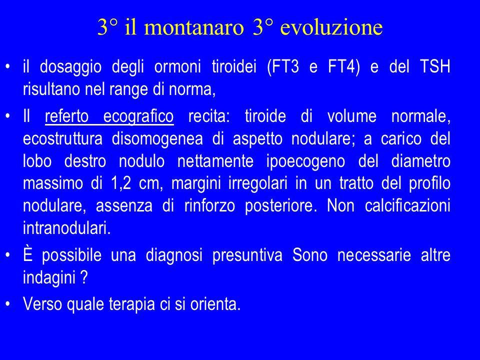 3° il montanaro 3° evoluzione