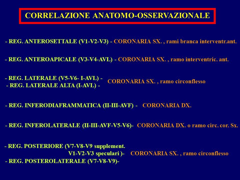 CORRELAZIONE ANATOMO-OSSERVAZIONALE