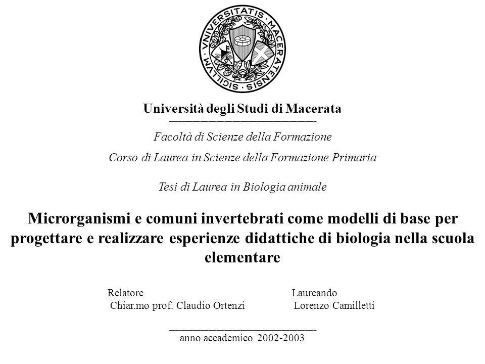 Università degli Studi di Macerata. ______________________________________________________. Facoltà di Scienze della Formazione.