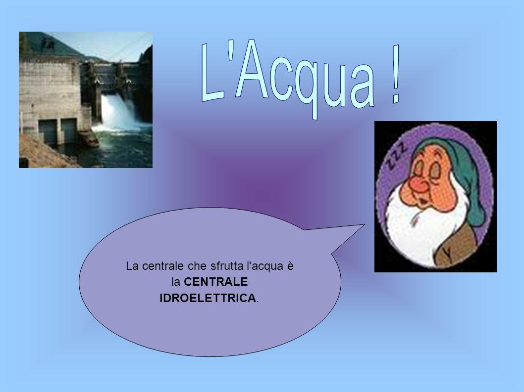 La centrale che sfrutta l acqua è la CENTRALE IDROELETTRICA.