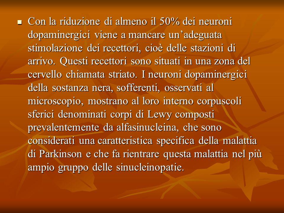 Con la riduzione di almeno il 50% dei neuroni dopaminergici viene a mancare un'adeguata stimolazione dei recettori, cioè delle stazioni di arrivo. Questi recettori sono situati in una zona del cervello chiamata striato. I neuroni dopaminergici della sostanza nera, sofferenti, osservati al microscopio, mostrano al loro interno corpuscoli sferici denominati corpi di Lewy composti prevalentemente da alfasinucleina, che sono considerati una caratteristica specifica della malattia di Parkinson e che fa rientrare questa malattia nel più ampio gruppo delle sinucleinopatie.