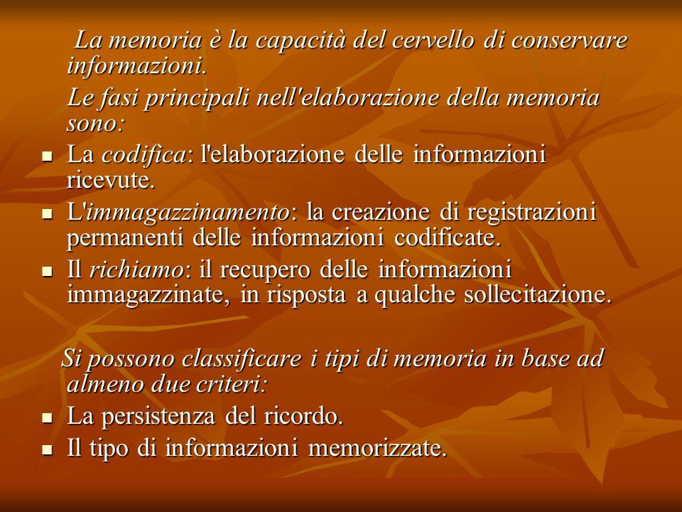 La memoria è la capacità del cervello di conservare informazioni.