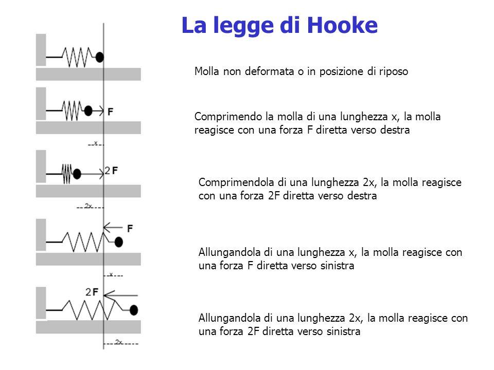 La legge di Hooke Molla non deformata o in posizione di riposo