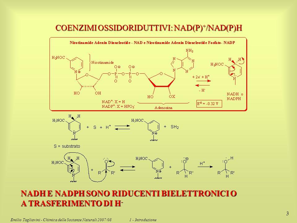 COENZIMI OSSIDORIDUTTIVI: NAD(P)+/NAD(P)H