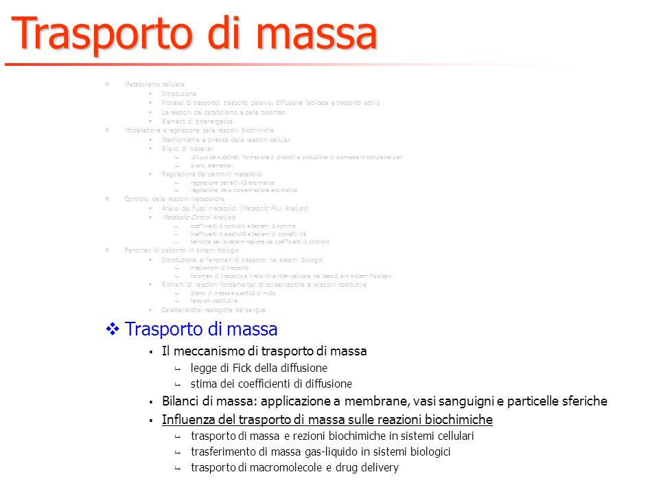 Trasporto di massa Il meccanismo di trasporto di massa