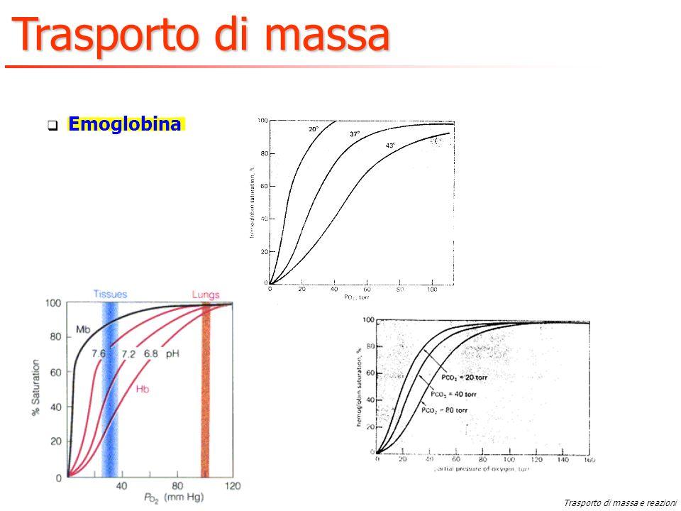 Emoglobina Trasporto di massa e reazioni