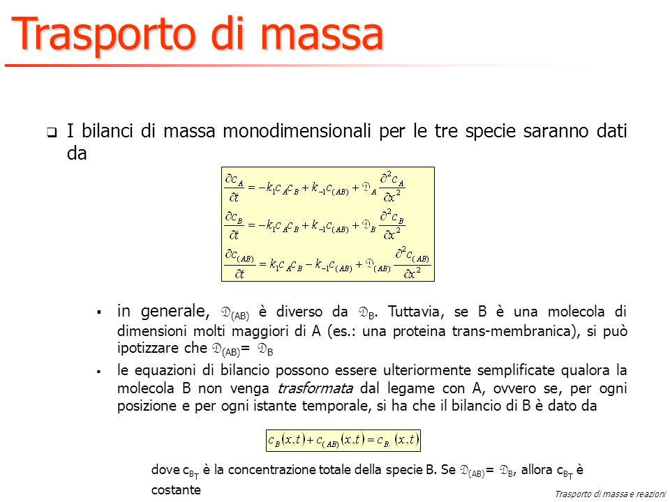 I bilanci di massa monodimensionali per le tre specie saranno dati da