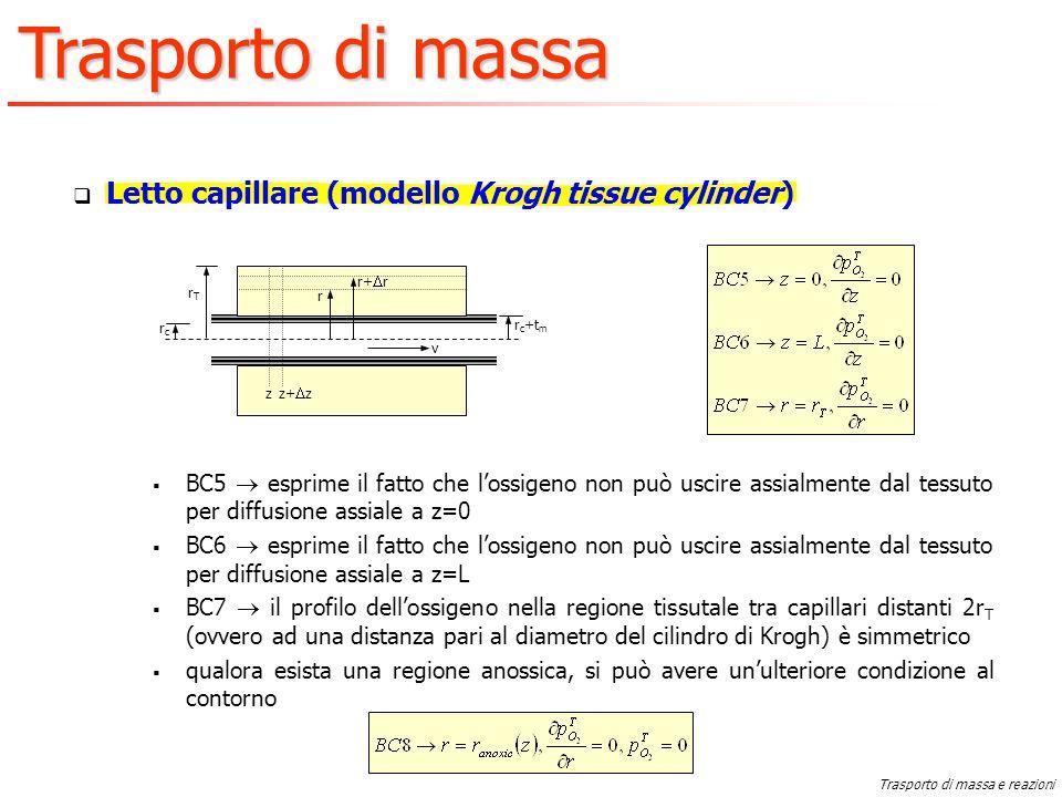 Letto capillare (modello Krogh tissue cylinder)