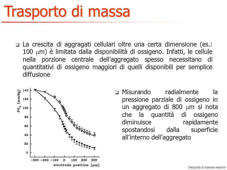 La crescita di aggragati cellulari oltre una certa dimensione (es