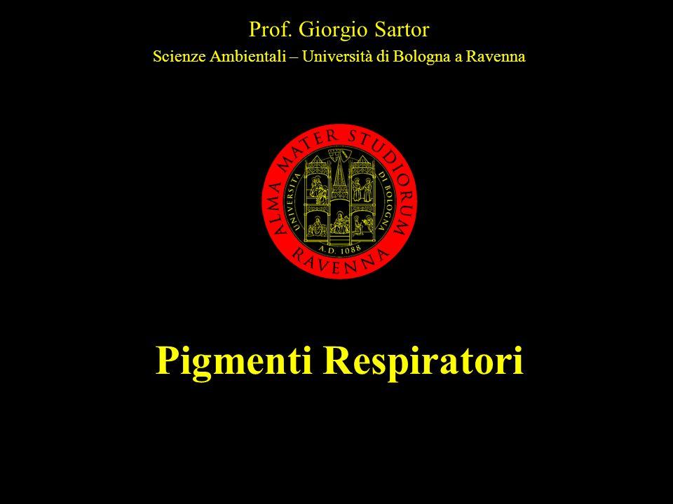 Scienze Ambientali – Università di Bologna a Ravenna
