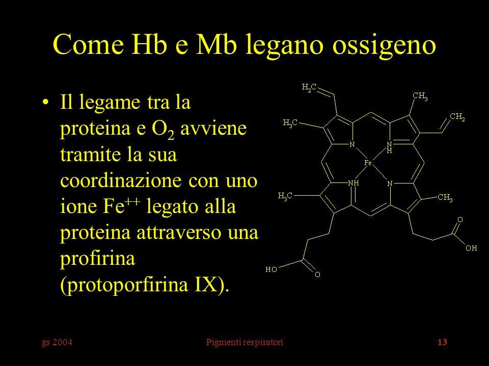 Come Hb e Mb legano ossigeno