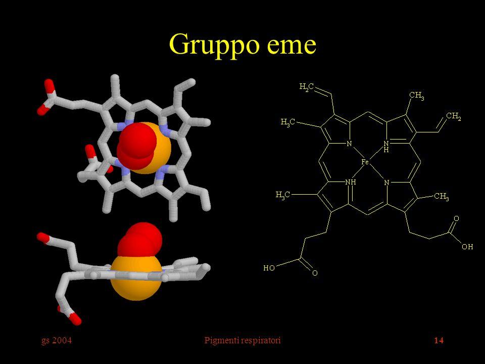 Gruppo eme gs 2004 Pigmenti respiratori