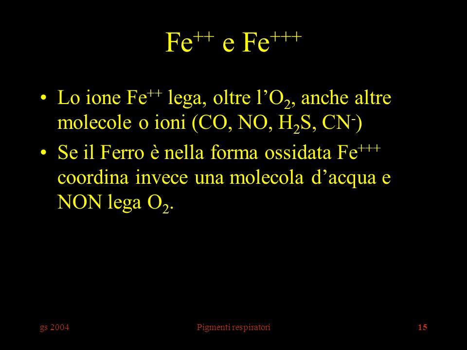 Fe++ e Fe+++ Lo ione Fe++ lega, oltre l'O2, anche altre molecole o ioni (CO, NO, H2S, CN-)