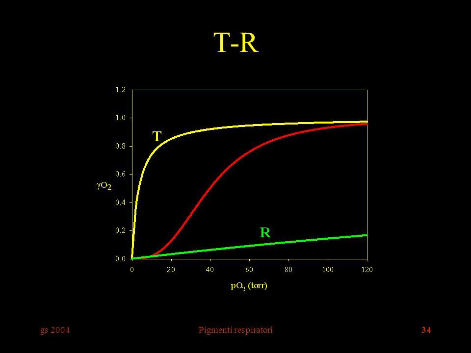 T-R gs 2004 Pigmenti respiratori